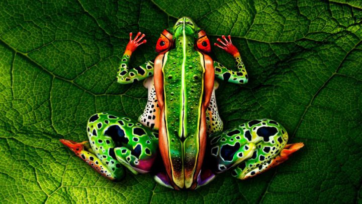 Incredible Pictures of Body Art