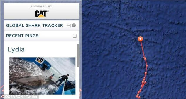Lydia becomes the First to Cross the Mid-Atlantic Ridge
