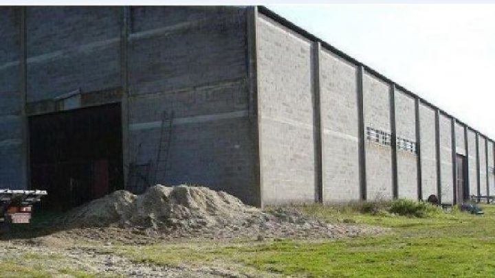 Man bought a property with a few acres with a welded shut old barn – Jackpot!!