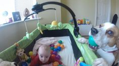 Must Watch : Dedicated Pooch created Ball party for Cute Baby !!!!