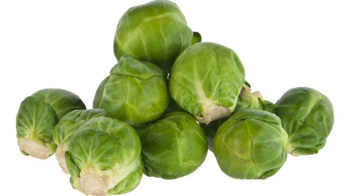 TEENAGER FAKES NEWS HEALTH ALERT ABOUT SPROUTS