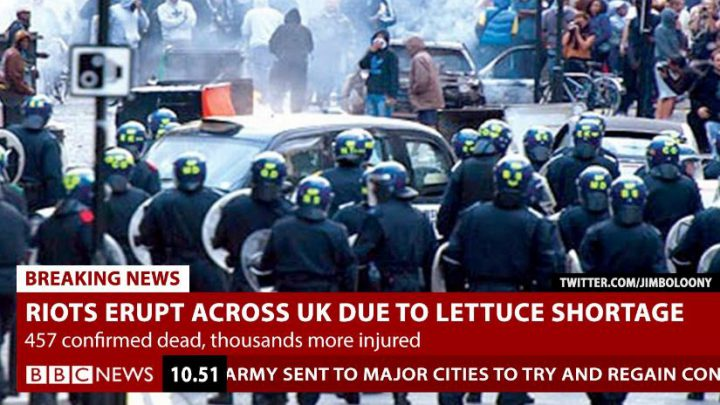 BREAKING: The Lettuce Crisis reaches new levels